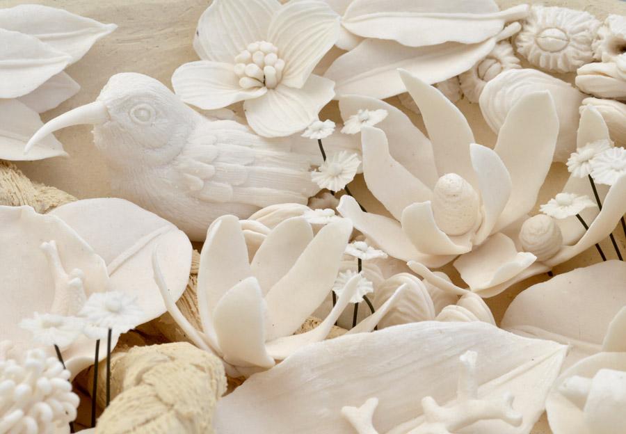 Nukupu'u in Koa Nest Detail
